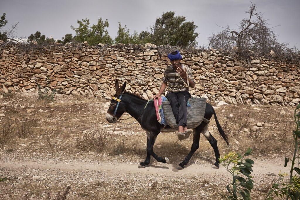 Marokko - De Reizigers - Road Trip -16