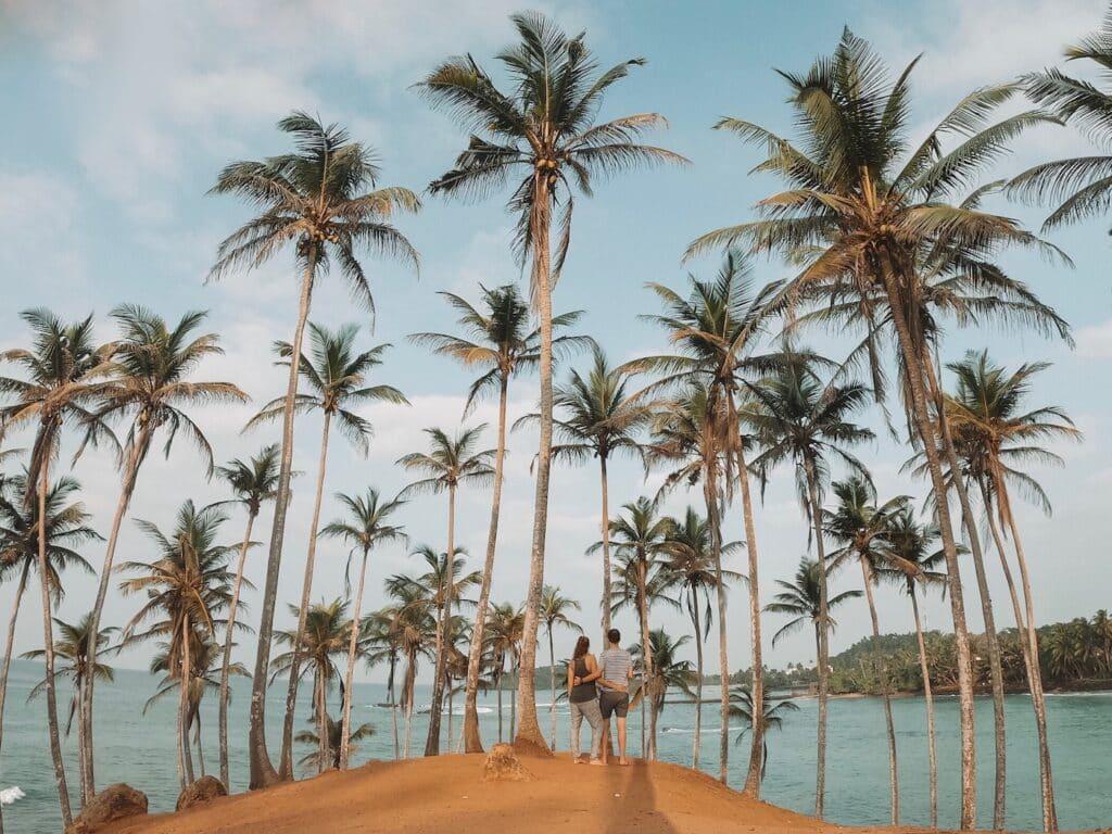 De Reizigers Sri Lanka Mirissa palmbomen strand