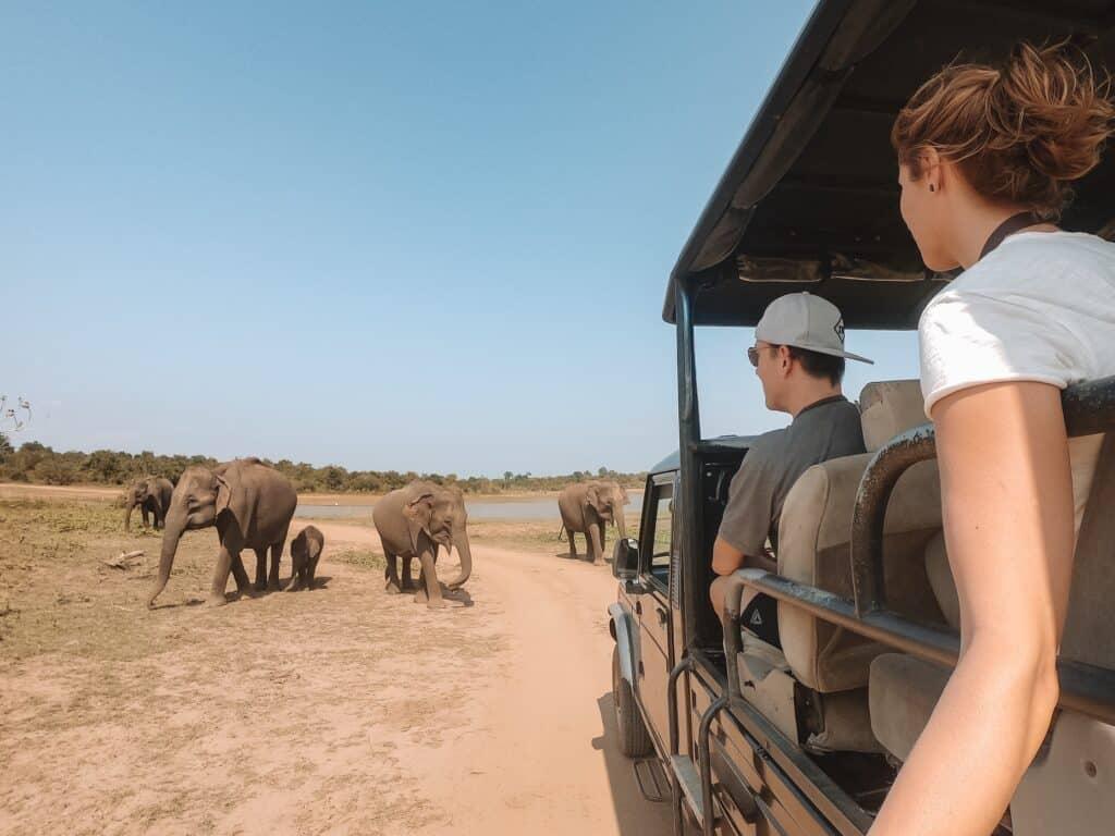 De Reizigers Sri Lanka Olifanten