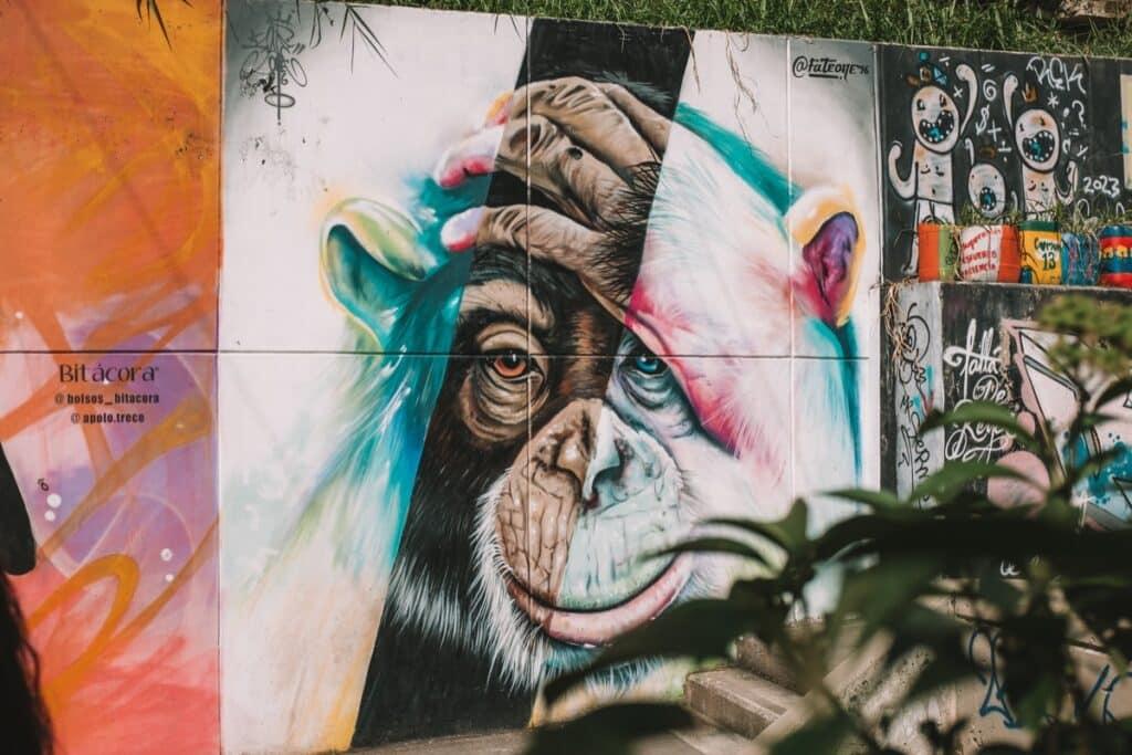 Een van de vele prachtige kunstwerken op de muren van Comuna 13