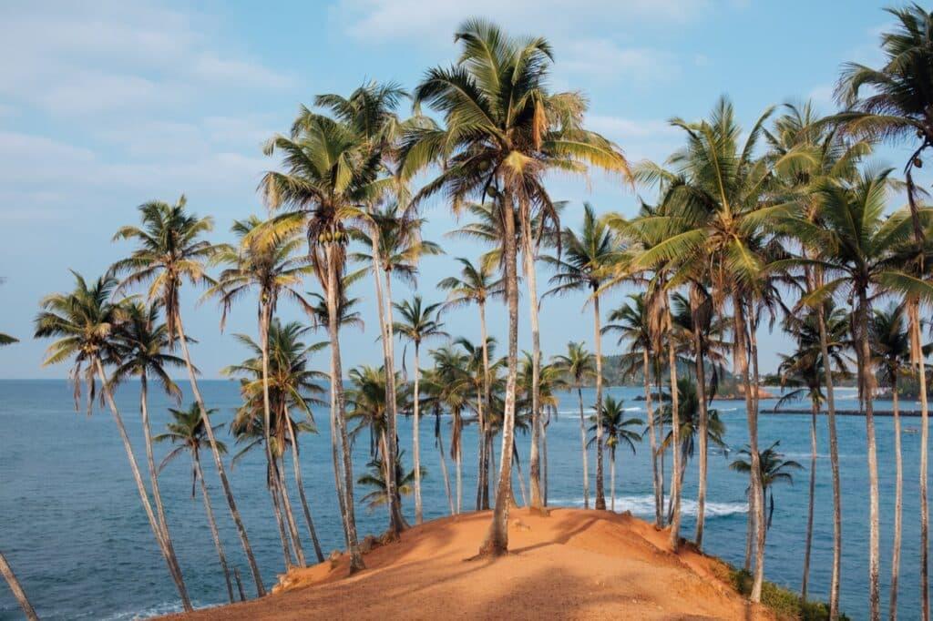 Reisroute Sri Lanka