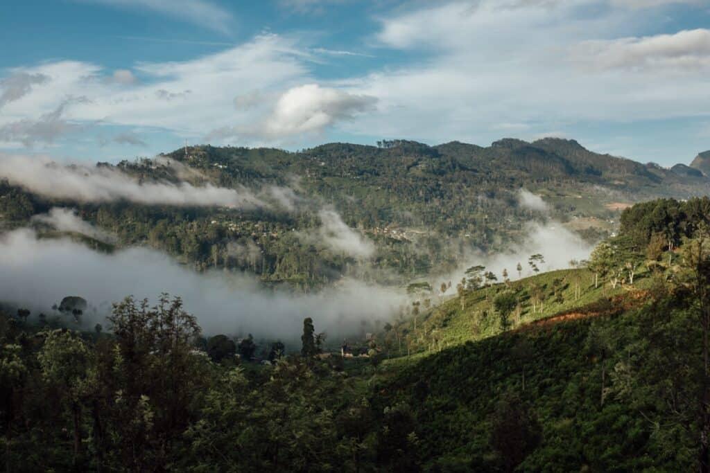 Treinreis Ella - Kandy Sri Lanka