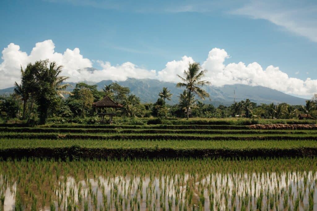 View tijdens het onbtijt op Lombok