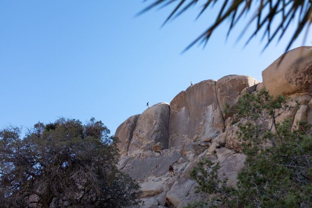 Klimmers Joshua Tree National Park