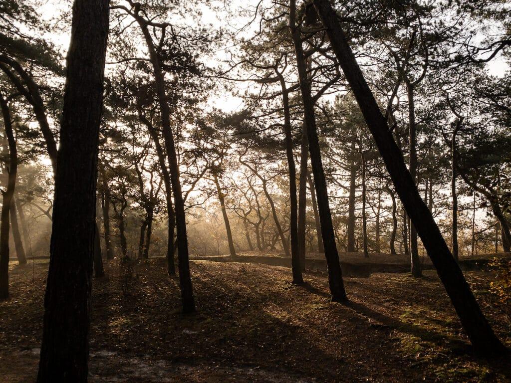 Schoorl - hike - zonsopkomst