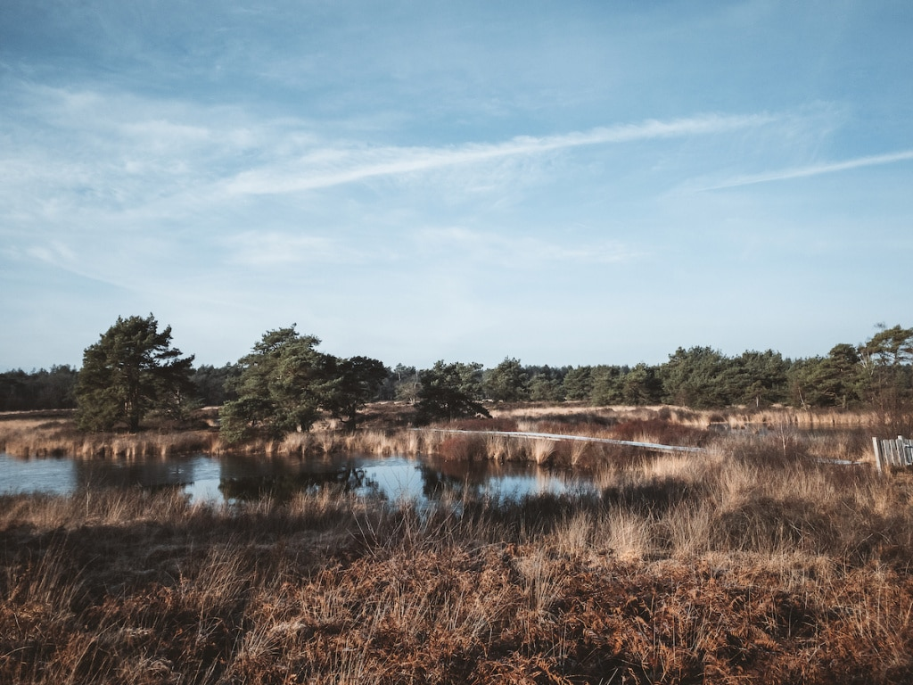 Hike - Malpie- water